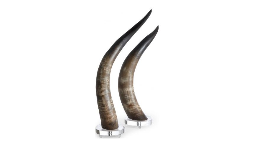 Decorative Accessories Natural Horns (Set of 2)