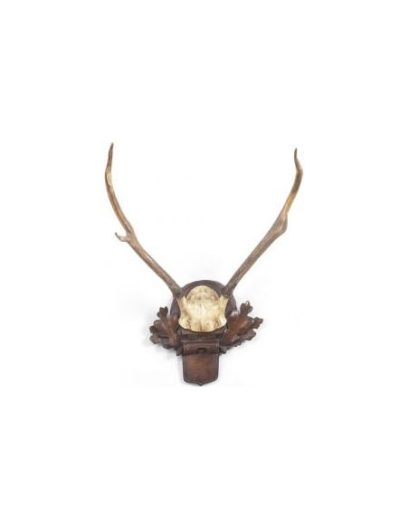Decorative Accessories Hand Finished Deer Antlers